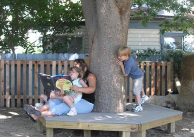 Tree bench around the zelkova tree