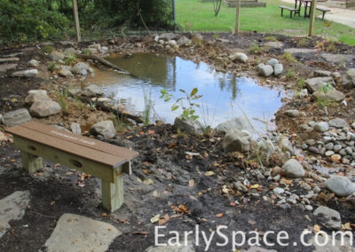 The spring fed vernal pool is full!
