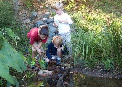 Exploring the vernal pool one year later. Plants have grown!