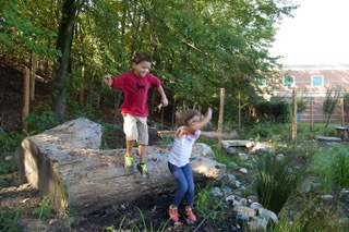 A giant log makes a great jumping off place.