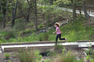 New entry bridge crosses the wetlands and gives families a dry route to school.